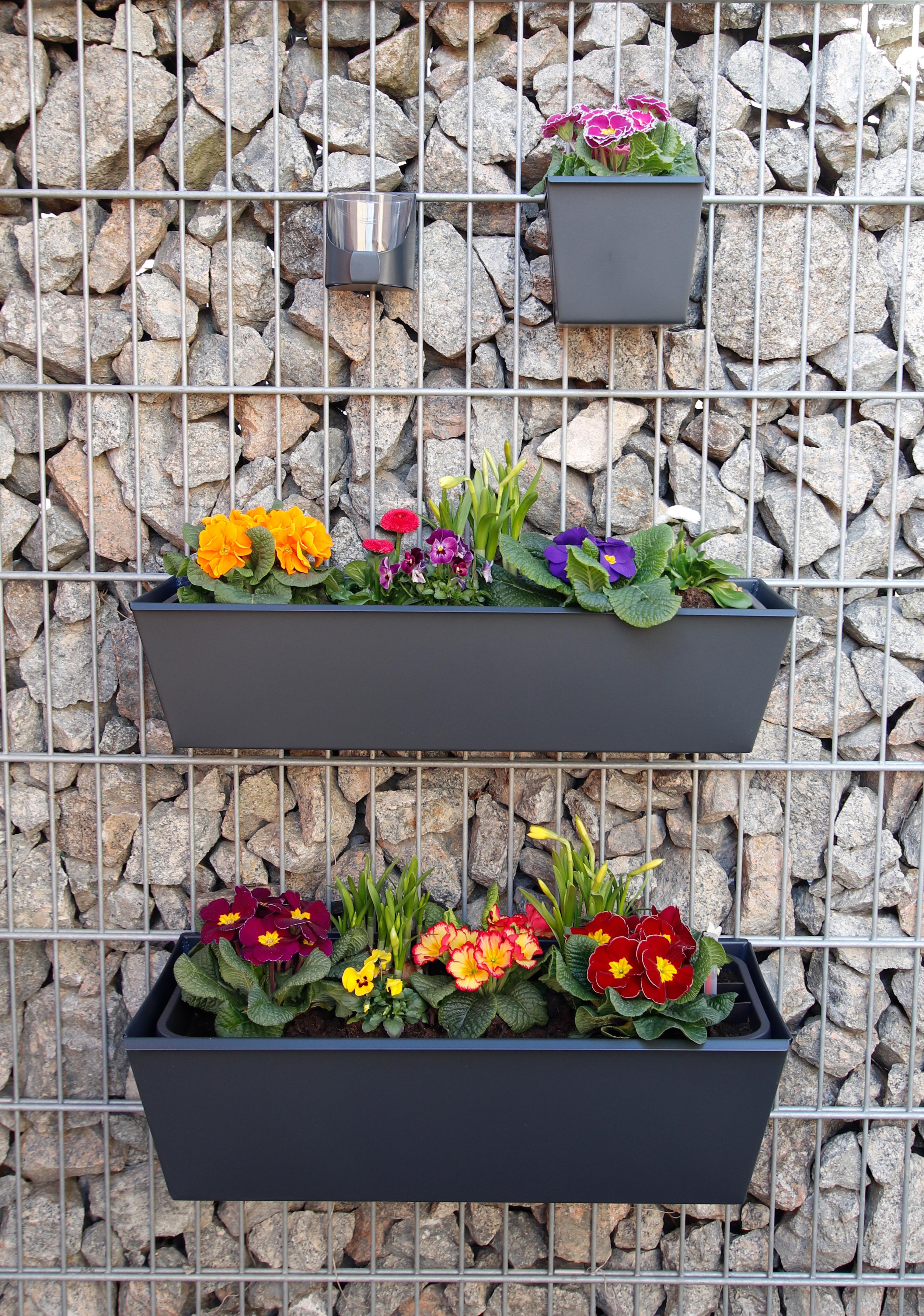 gabioka flowerbox 60cm standard anthrazit pulverbeschichtet (RAL 7016 glatt matt)